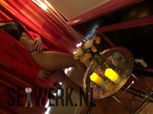 Privehuis & Sexclub Vienna Amsterdam