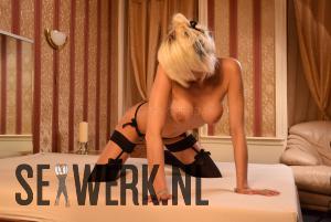 Roxy blonde Pornoster
